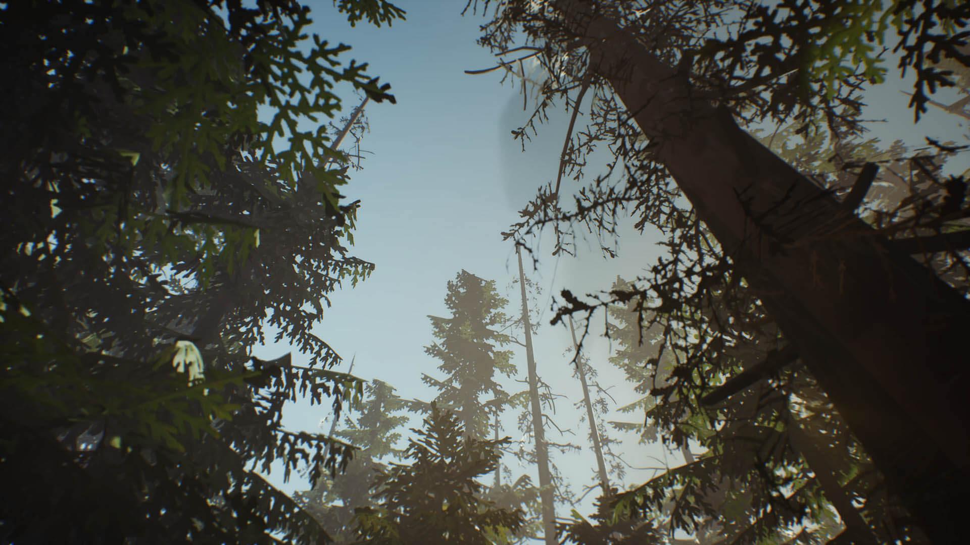Life is Strange 2 – Episodio 2_paisajes