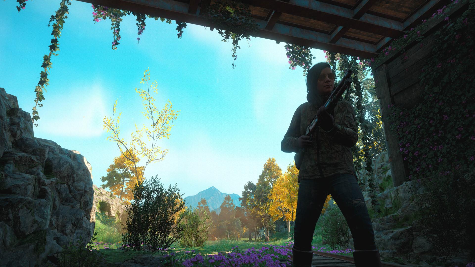 Far Cry® New Dawn_modo fotografia galeria soli 3