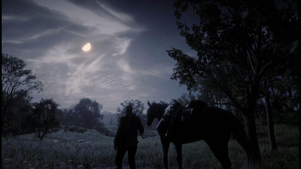 Red Dead Redemption 2 - Noche